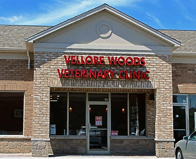 Vellore Woods Veterinary Clinic - Veterinarian in Vaughan, ON - Full Service Animal Hospital & Pet Dental Centre