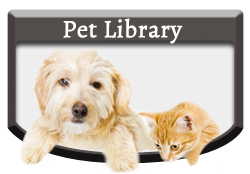 Pet Library - Vellore Woods Veterinary Clinic - Veterinarian in Vaughan, ON - Pet Dental Centre