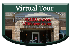 Virtual Tour - Vellore Woods Veterinary Clinic - Veterinarian in Vaughan, ON